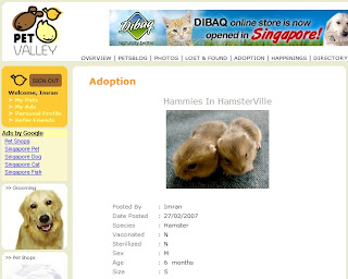 Pet Valley's Hammies In HasmterVille Adoption Ad