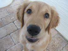 I Smile for Da Camera
