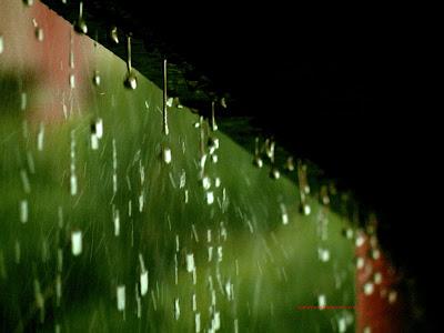 RAIN DROPS DESKTOP WALLPAPER