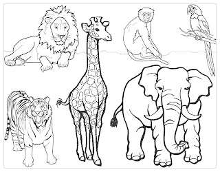 letter z i had them color a page of z oo animals download here