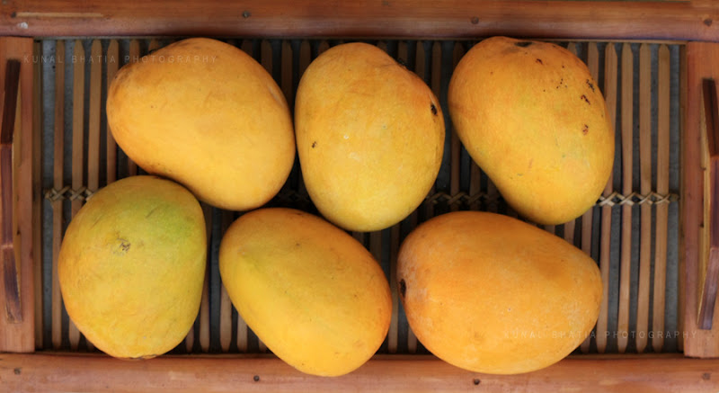 mangoes in a tray in mumbai by kunal bhatia