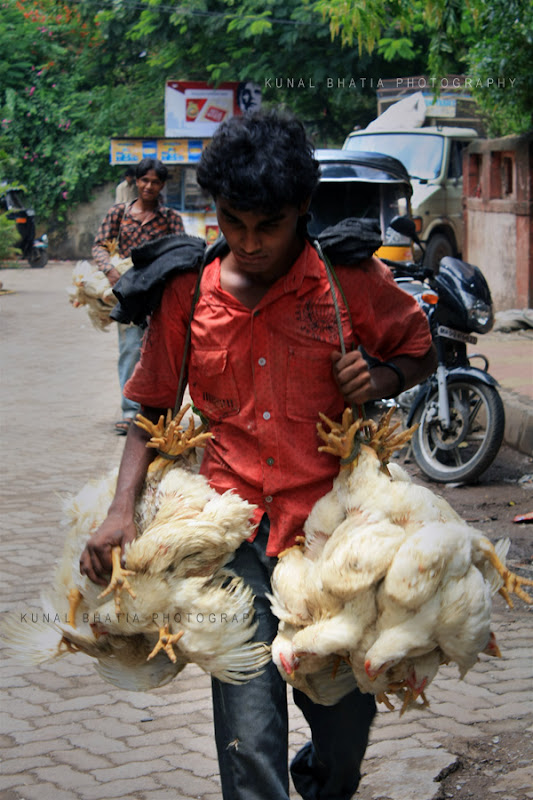 Chicken hens being taken to the butchers by carrying them on the streets in Mumbai by Kunal Bhatia