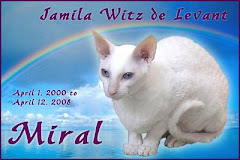 A tribute for sweet Miral...