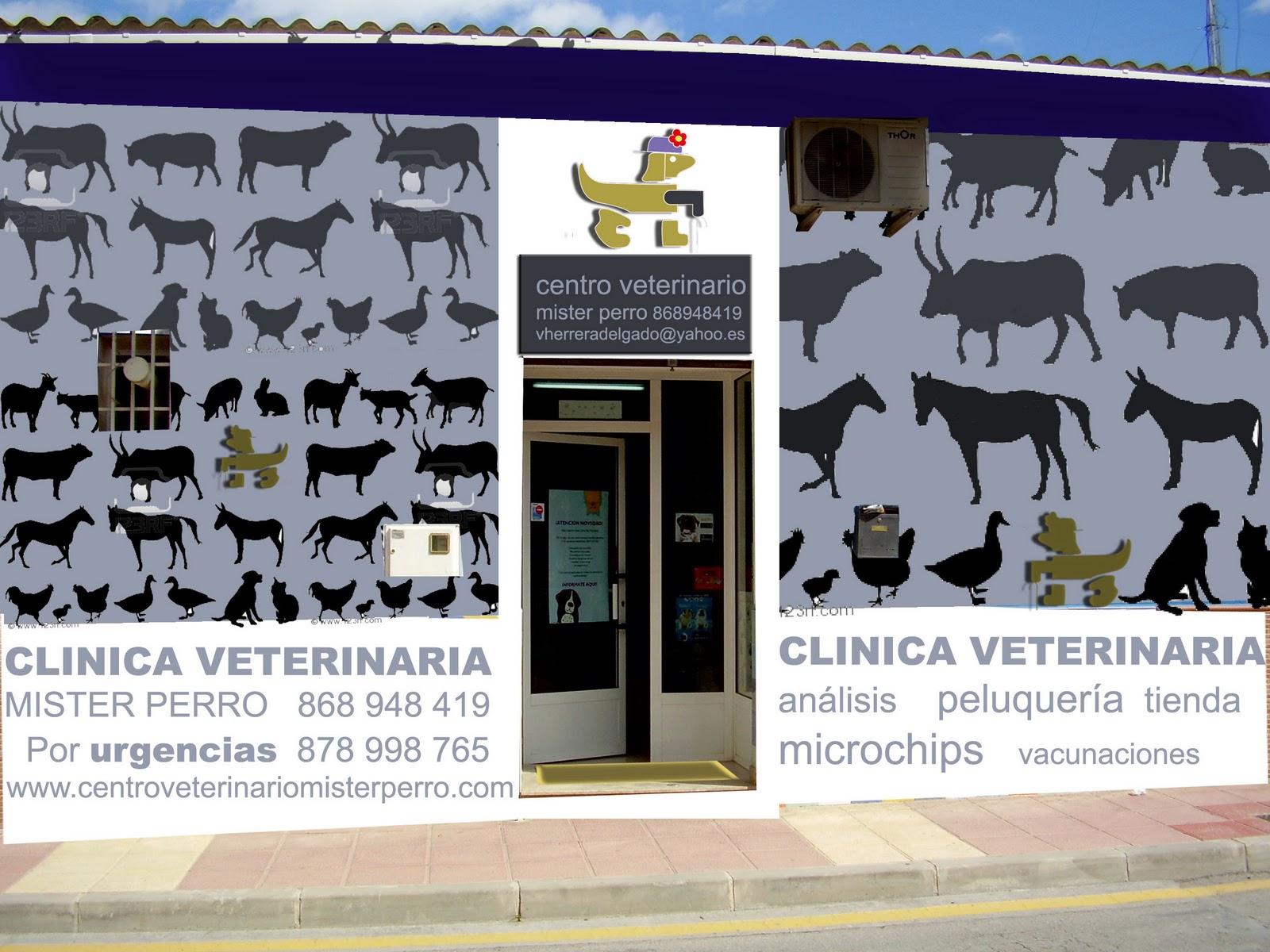 Ideas del mediterraneo fachada para cl nica veterinaria - Diseno de clinicas veterinarias ...