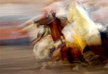 Fantasía o Furúsiyya marroquí con caballos purasangre árabes y bereberes.