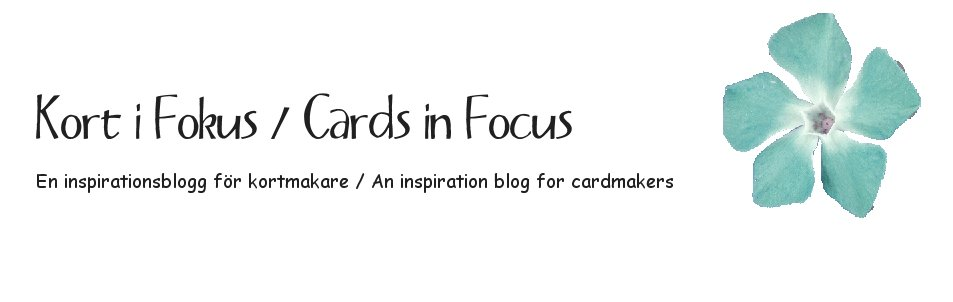 Kort i Fokus / Cards in Focus