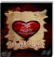 أبوأحمد المصرى