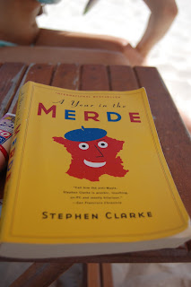 Aurore Taupin Blog A year in the merde