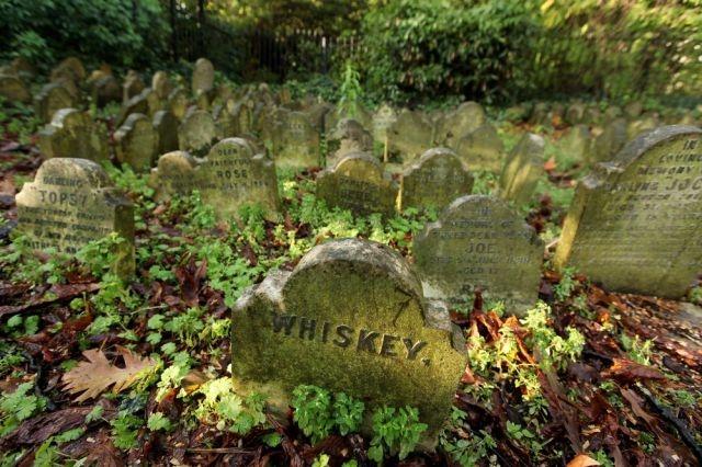 Pet Cemetery Hyde Park London