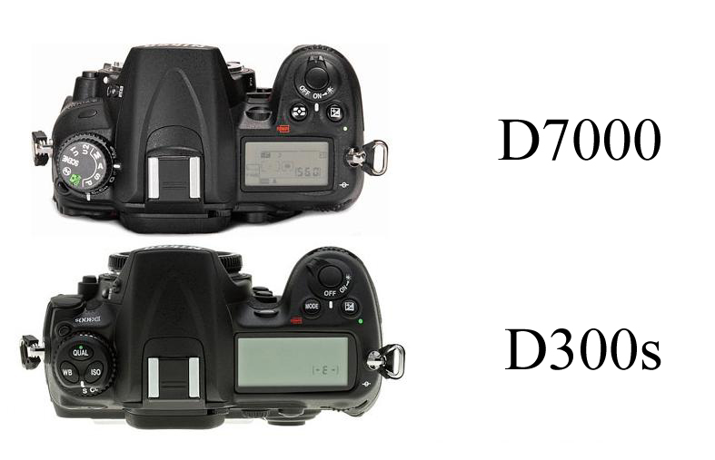 Bodzash Photography and Astronomy: In-Hand Feel: D7000 vs. D300s