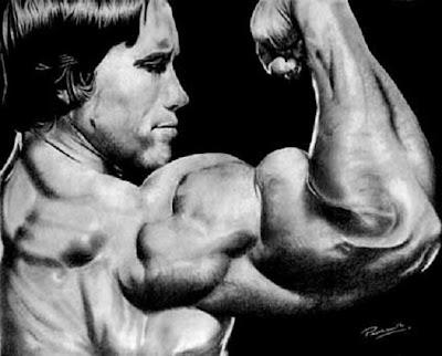 arnold schwarzenegger bodybuilding. arnold schwarzenegger photos
