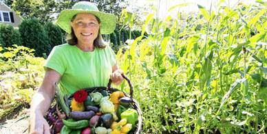 Covertress Vegetable Gardening Soil Preparation