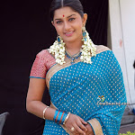 Beautiful Actress Meera Jasmine In Saree