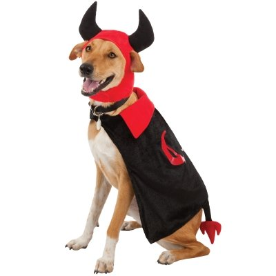 sc 1 st  lamborghini : dog groom costume  - Germanpascual.Com