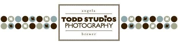 Todd Studios Blog