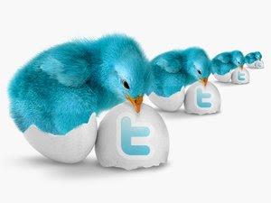 icones twitter