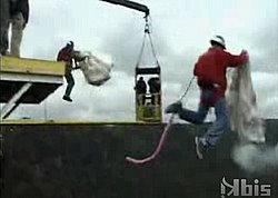 Parachute, Bungee Jump, Then Parachute Again!