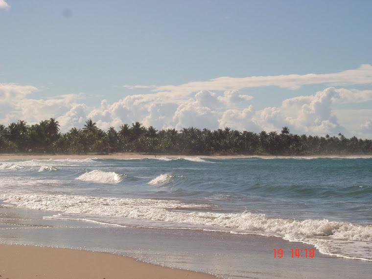 Taipu de Fora - Bahia