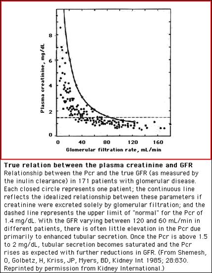 serum creatinine and gfr relationship tips