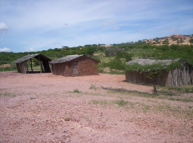 Viviendas de Ipapure