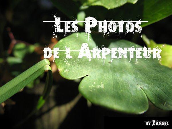 Les Photos de l'Arpenteur
