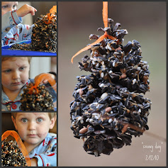 Pine Cone Bird Feeder