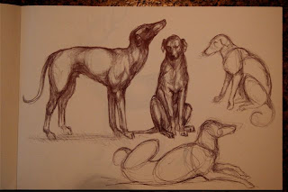 ink sketches of dogs by Ophelia Keys