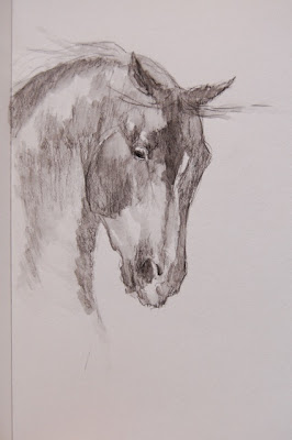 horse drawing by ophelia keys