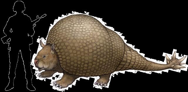 Descubren un armadillo prehistórico gigante