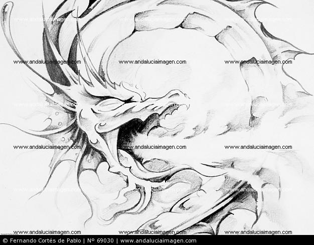 dibujos de dragones para tatuajes. dragon para tatuaje