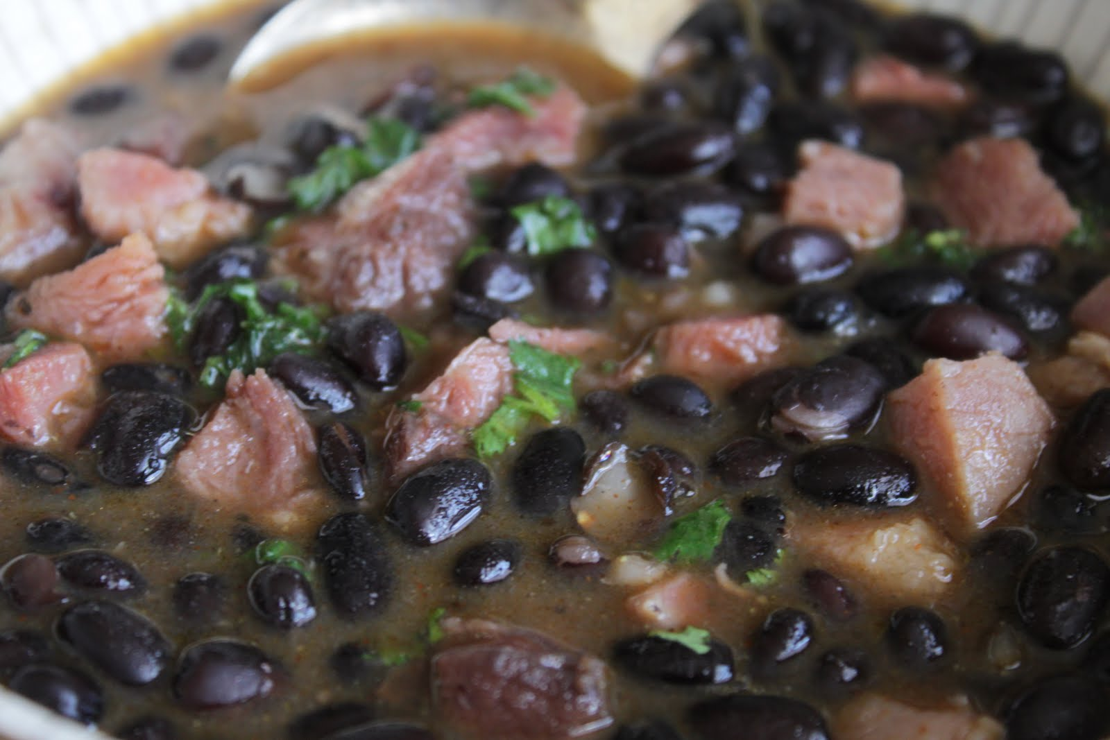 Black Bean Soup ~ Food Generalist