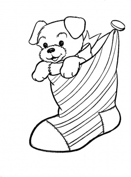 Puppy Coloring on Puppy Dog In A Christmas Stocking Coloring Page Jpg