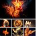 Best Fire Wallpapers