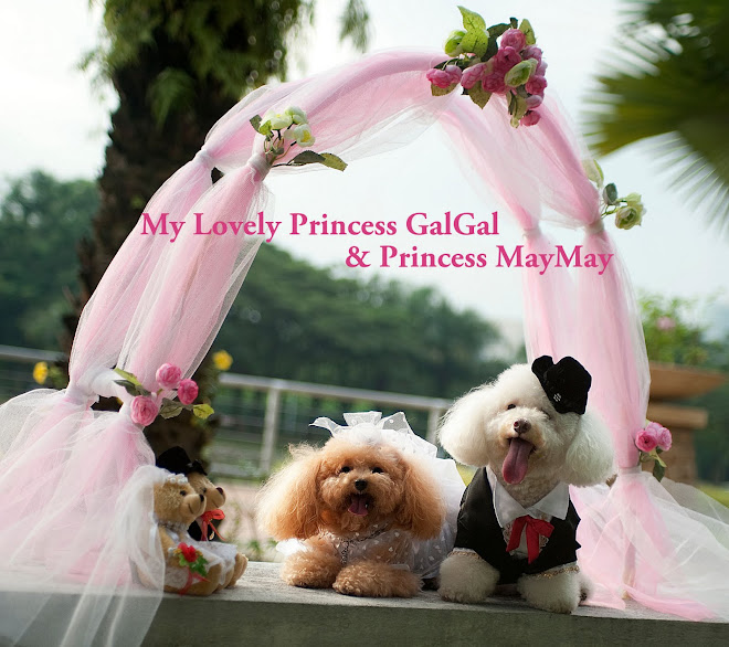 my lovely princesses gal & may