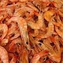 dicas culinárias camarão