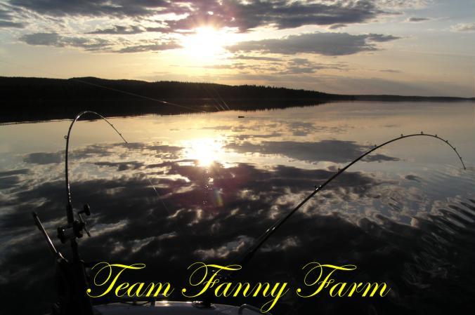 Team FannyFarm