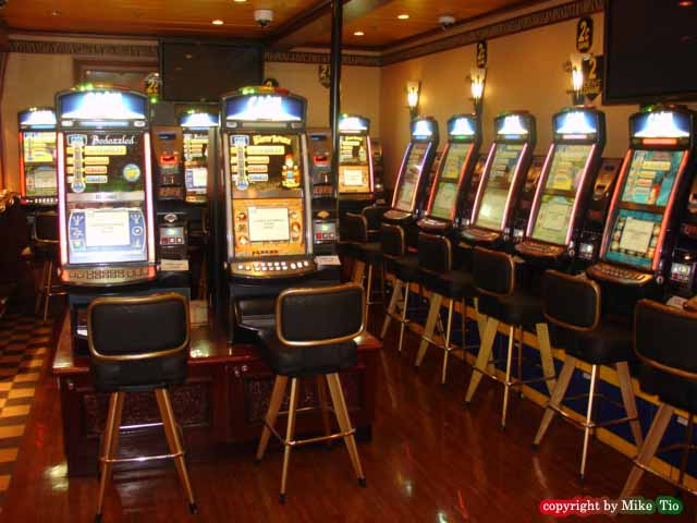 club oasis casino