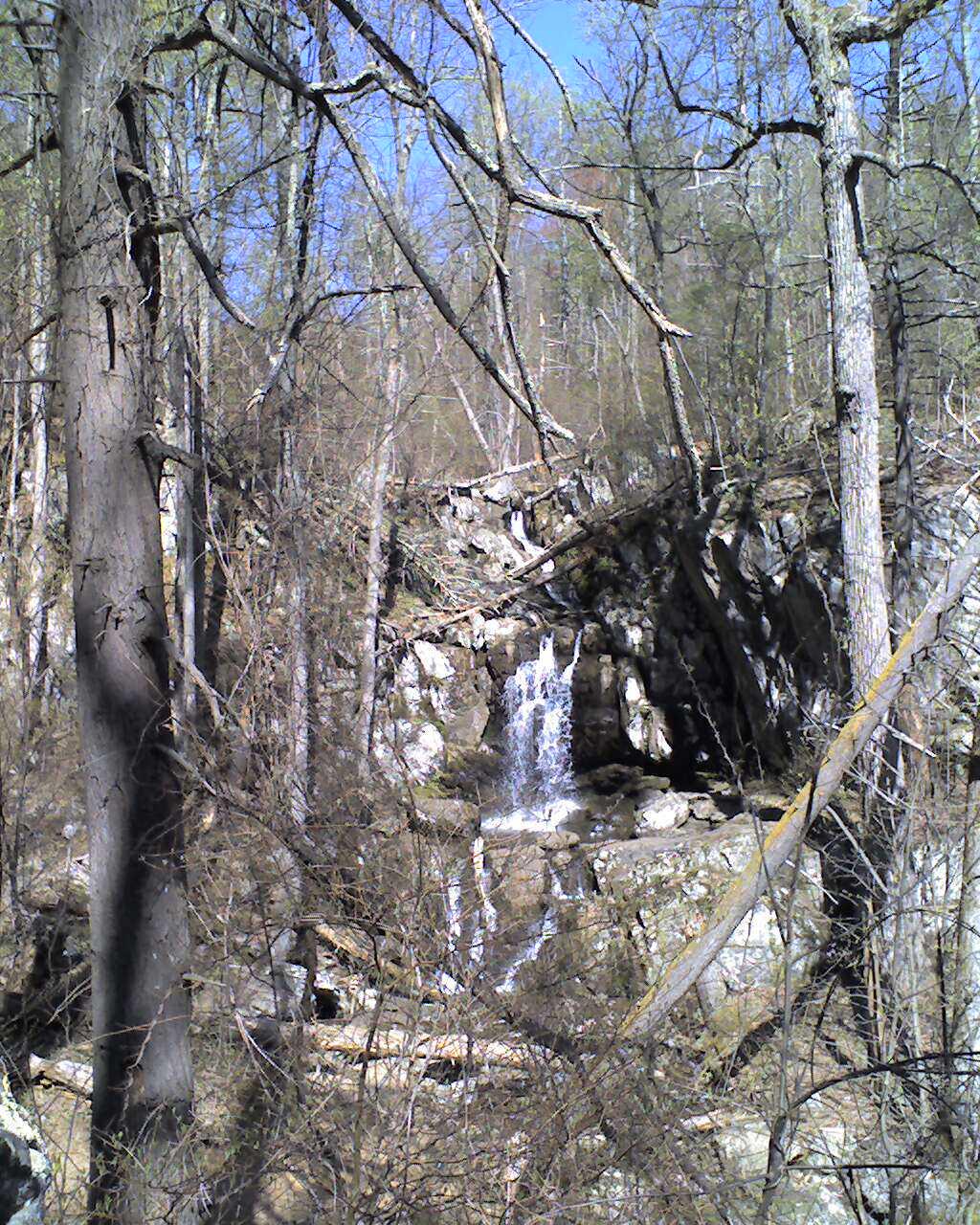 Hawksbill Cabin Jones Run Doyles River Part 2