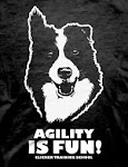 Camisetas Agility is fun !