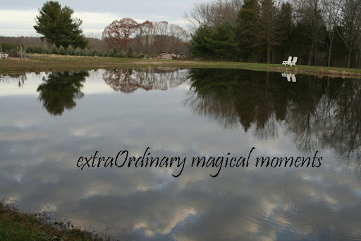 extraOrdinary Magical Moments