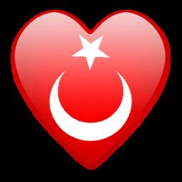 Türk bayrağı 7