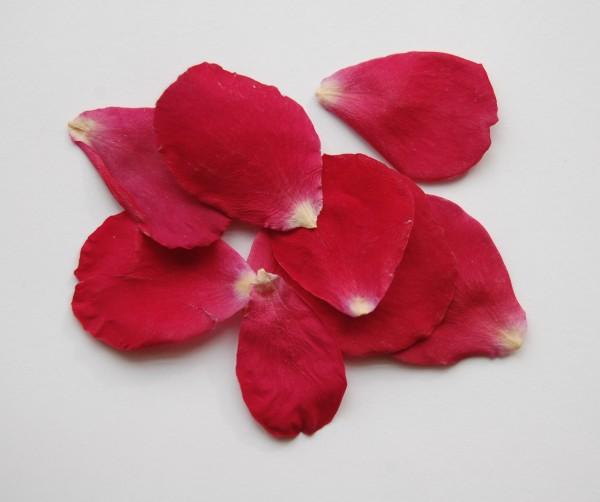 The Confetti Blog  St Valentine U0026 39 S Day