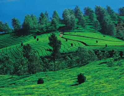 Coorg - Karnataka Tourism