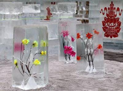 China Winter Show Photos