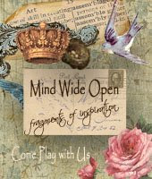 Mind-wideopen
