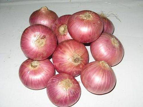 http://1.bp.blogspot.com/_YahcrNk_moI/TRfa6mgVWpI/AAAAAAAAASU/Rt9rIScblME/s1600/Fresh-Red-Onion.jpg
