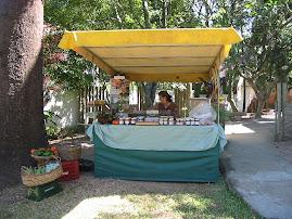 Feira de Ipanema - Escola Arco Iris