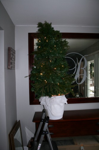 3 Foot Lighted Christmas Tree