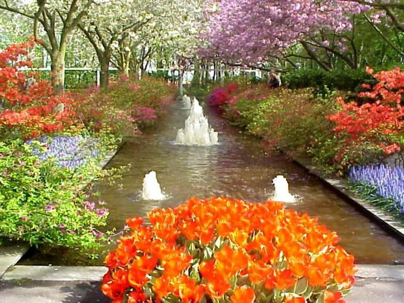 imagens jardim florido:Gotas de Luz e Esperança: Abril 2010
