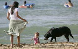 luciana barroso beach